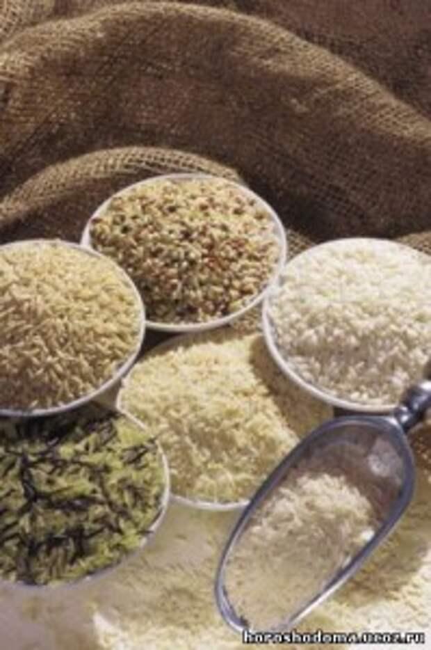 Выбираем рис по форме, виду, качеству и сортам