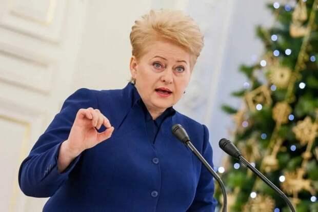 Экс-посол России в Литве рассказал, что ответил Грибаускайте на хамство