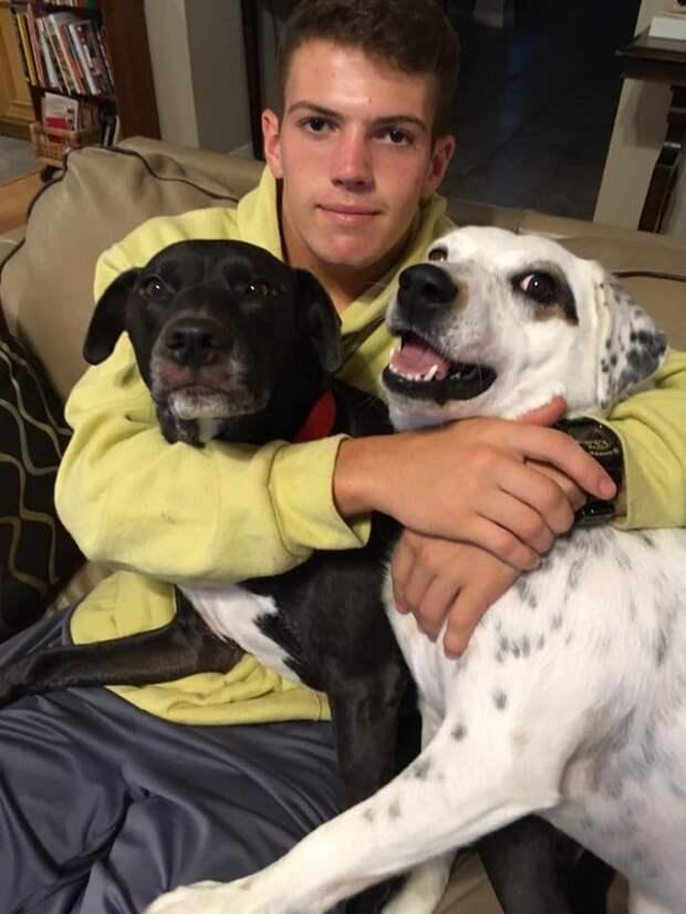 «Слишком привязчивая!» — объяснил мужчина, отдавая в приют любящую собаку