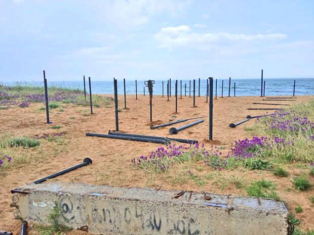 Мощное противодействие сохранению природы феодосийского Золотого пляжа