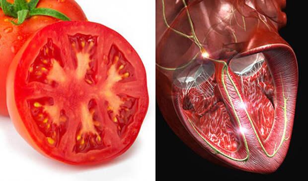 Эта еда полезна для той части тела, на которую похожа