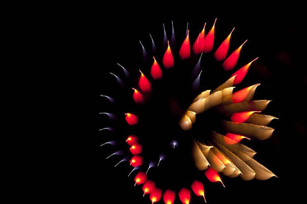 Огненные цветы Дэвида Джонсона
