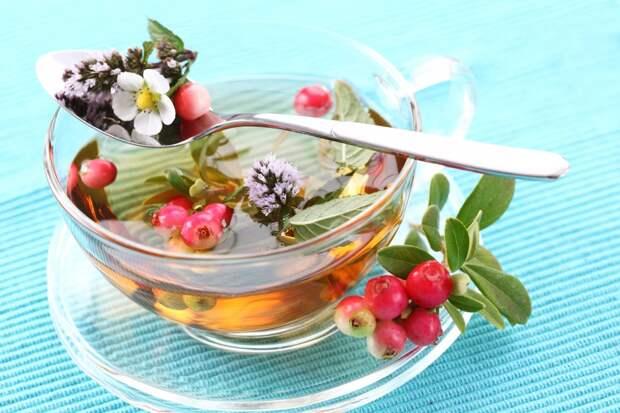 Многие травы, цветы и ягоды используются для приготовления чая