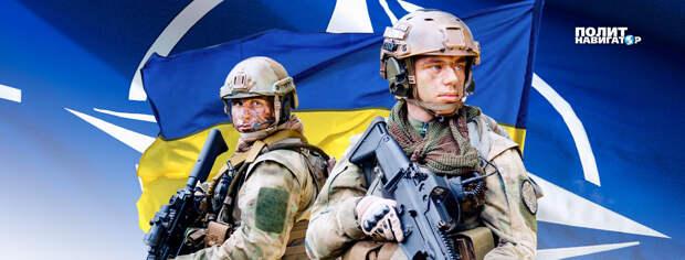 Украина намерена втянуть НАТО в войну с ЛДНР