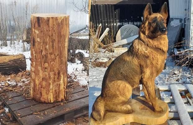 Воронежец бензопилой делает из дерева собак, как живых