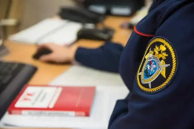 СК завёл дело о халатности после убийства двух девочек в Кузбассе