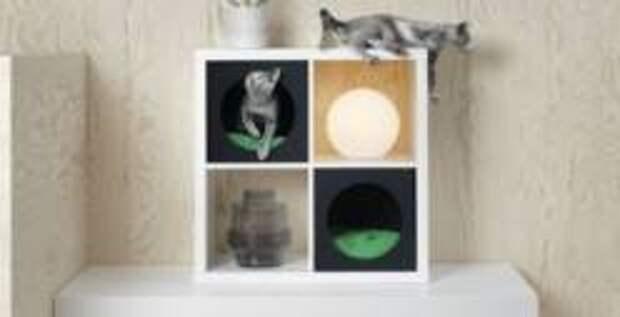 IKEA начала продавать в России товары для кошек и собак