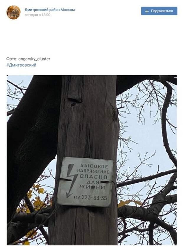 Фото дня: раритетный столб в парке «Ангарские пруды»