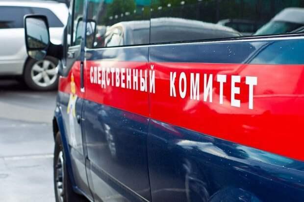 Московский репетитор похитил ребёнка