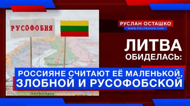 Литву обижает мнение россиян, что она «маленькая, злобная и русофобская»