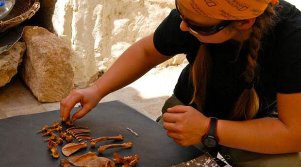 Правда о Древнем Риме, которую ученым открыл мусор