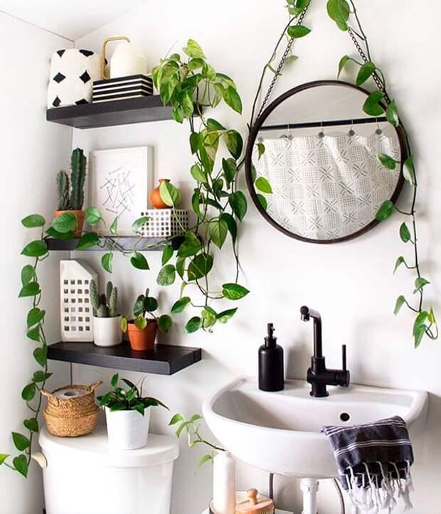14 простых идей, как украсить ванную, не потратив слишком много денег
