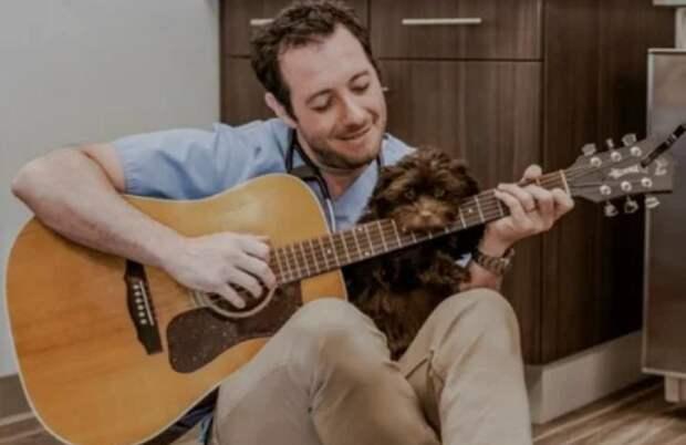 Пес из приюта боялся ветеринаров, и тогда врач решил ему спеть