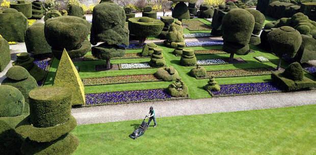 работа садовников и дизайнеров