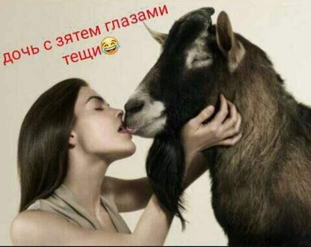- Роза Марковна, а шо такое любовь?  - Ой, Софочка, всё просто...