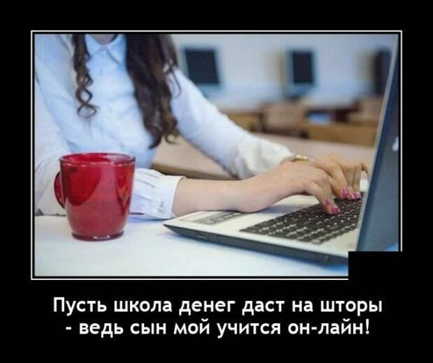 Демотиватор про онлайн обучение