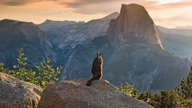 20 самых захватывающих приключенческих фотографий года