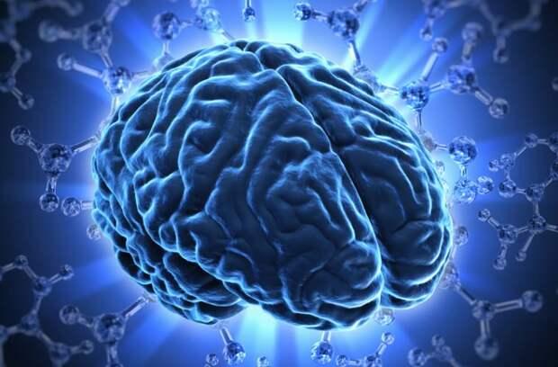 11 способов повысить уровень серотонина в мозгу без лекарств