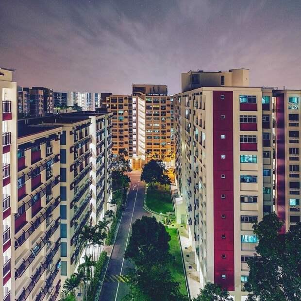 11. Сингапур - это небольшие зеленые насаждение вдоль каменных коробок жилая застройка, каменные джунгли, квартиры, фото, человеческий муравейник