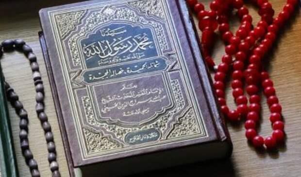 Компенсация антиобраза: зачем Навальному понадобилось изучать Коран