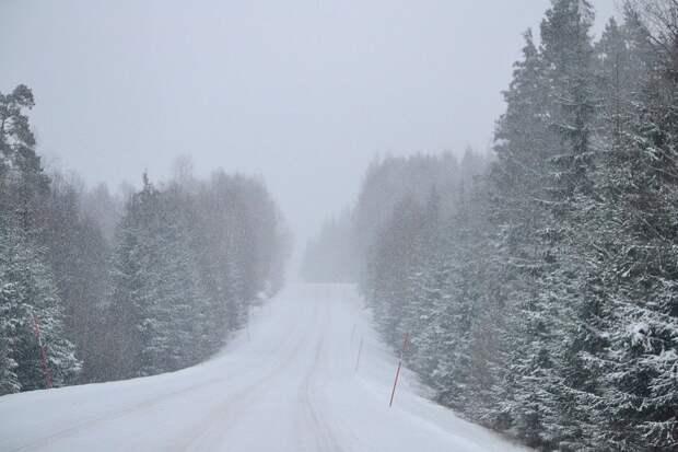 Жителей Удмуртии предупредили о сильном снегопаде и тумане
