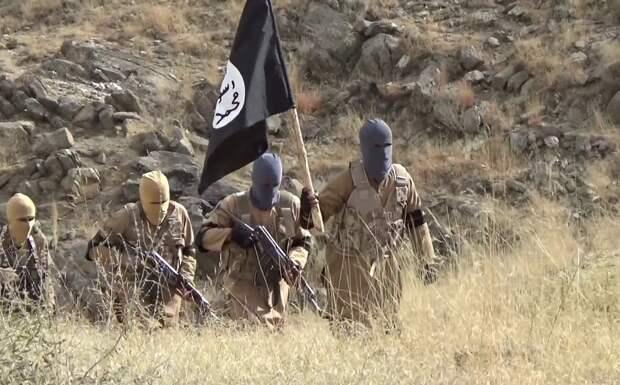 Афганские террористы Зеленского