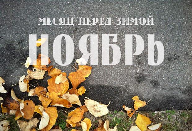 Народный календарь ноября