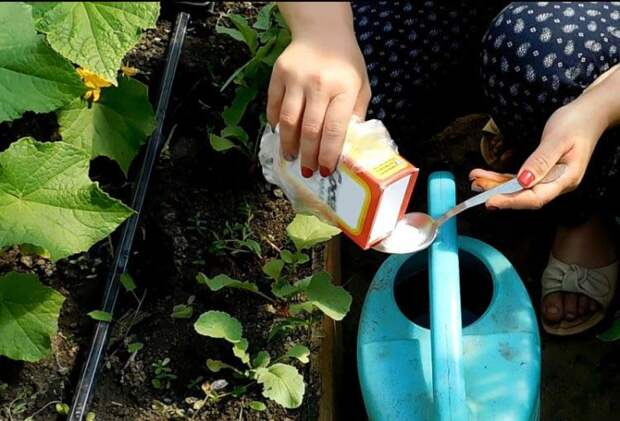 6 нестандартных способов применить пищевую соду в быту себе на радость