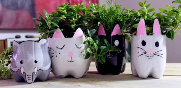 вазы на столе