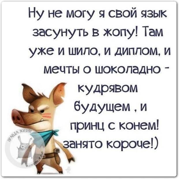 Жена, и другие члены семьи Петровича считают, что Петрович пьет безбожно...