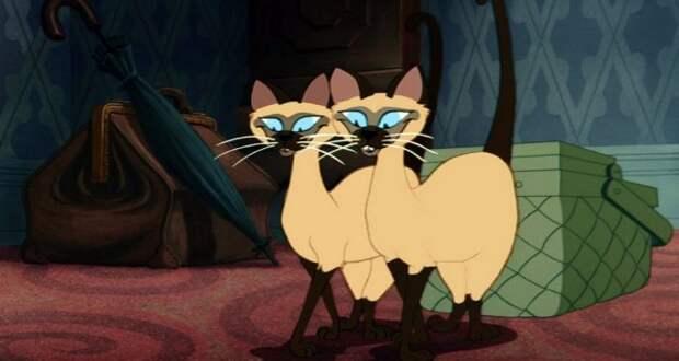 Disney будет клеймить мультики. Сиамские коты, например, оскорбляют азиатов, а вы и не думали, да? дисней, толарентность, абсурд