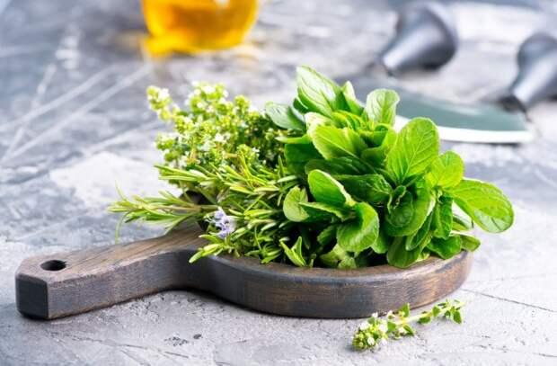 10 пряных растений, которые нужно выращивать, если любите готовить