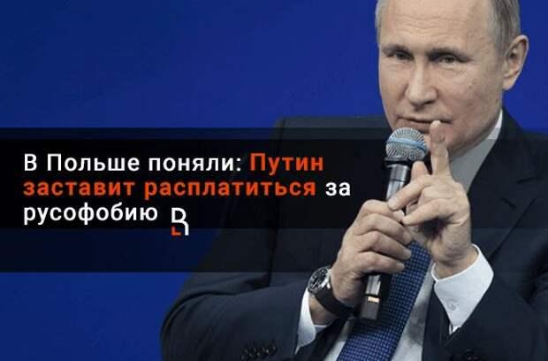 Польский профессор рассказал, за какую «нить» Запад пытается держать Путина