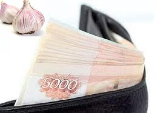 Используем волшебные свойства чеснока для привлечения денег