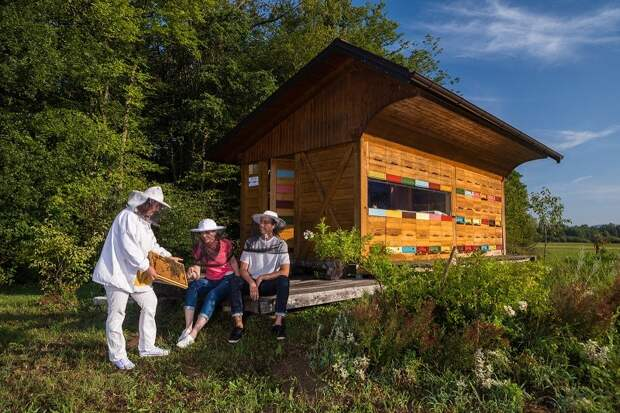 Словения – европейская столица апитуризма