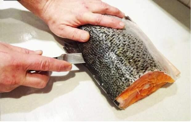 Как правильно разделать и засолить рыбу. Все тонкости этой процедуры, чтобы получилось вкусно