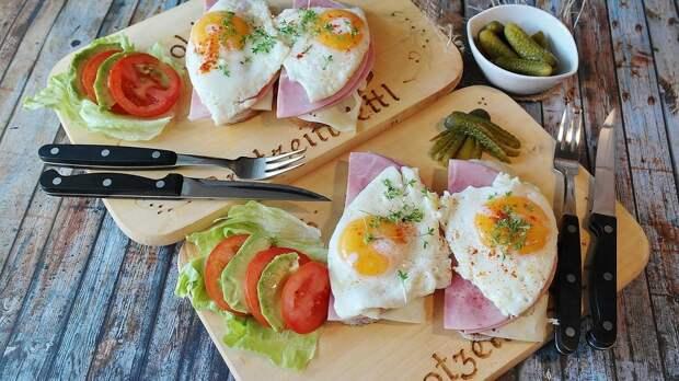 Вся правда о яйцах: неужели это идеальная еда?