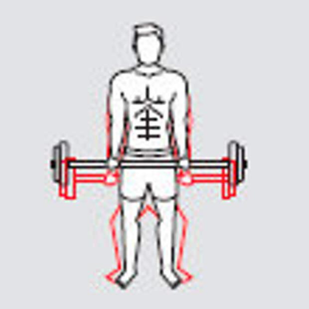 Фото 2 - Жми быстрее: 4 упражнения для быстрого набора мышечной массы