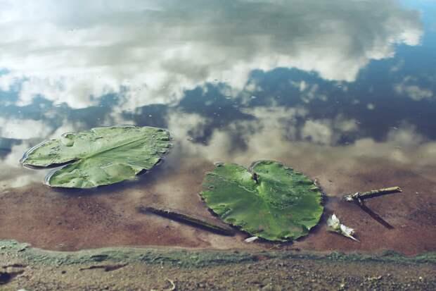 Ни один водоем в Удмуртии не признали пригодным для купания