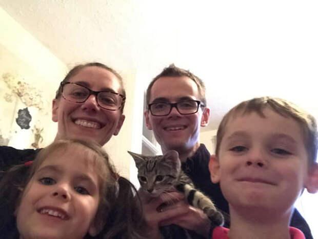 котенка приютила семья