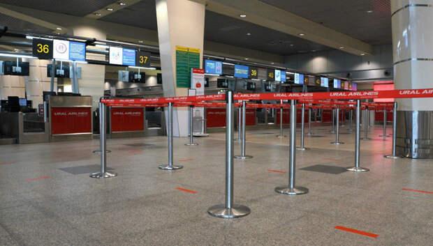 Подмосковный Минтранс встретил в аэропортах более 17 тыс человек за 2 месяца