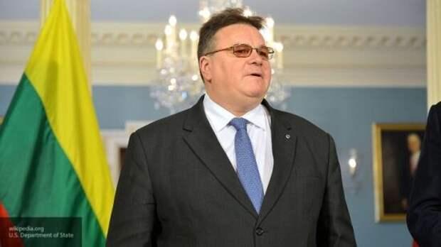 Литва попыталась вставить палки в колеса диалога Прибалтики с Россией