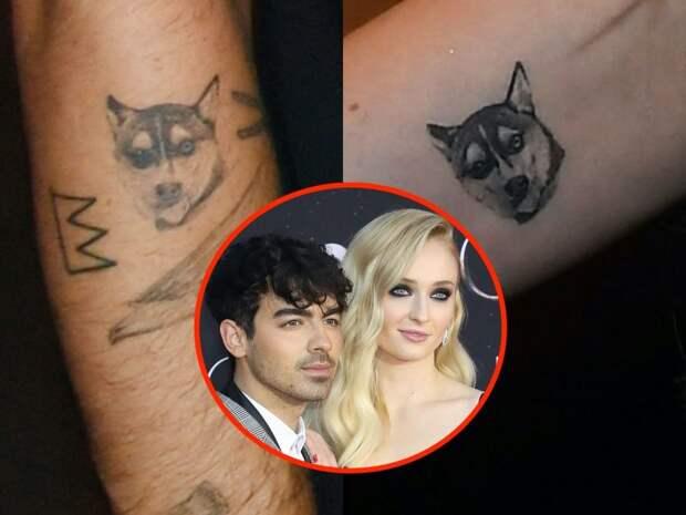 6 татуировок знаменитостей, которые они посвятили своим домашним животным