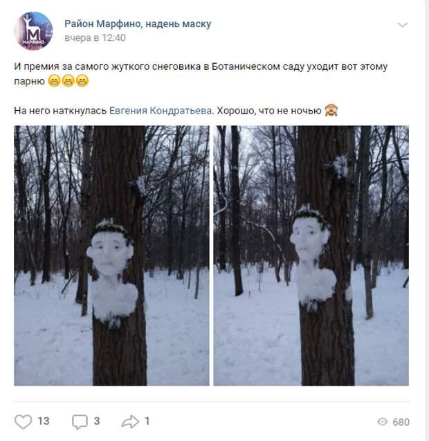 Фото дня: в Ботаническом саду слепили снеговика на дереве