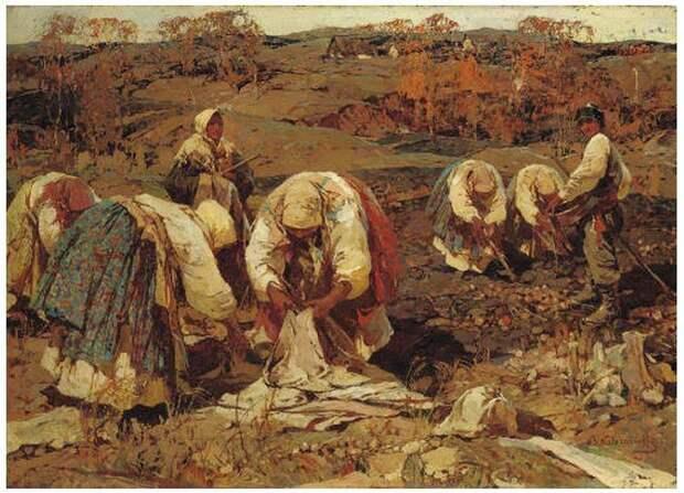 С. Колесников. Сбор урожая картофеля.