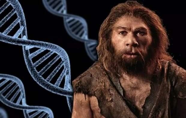 Неандертальцы и люди воевали более 100 000 лет