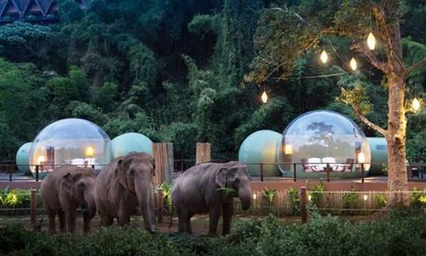 Таиланд. Ночь. Пузырь