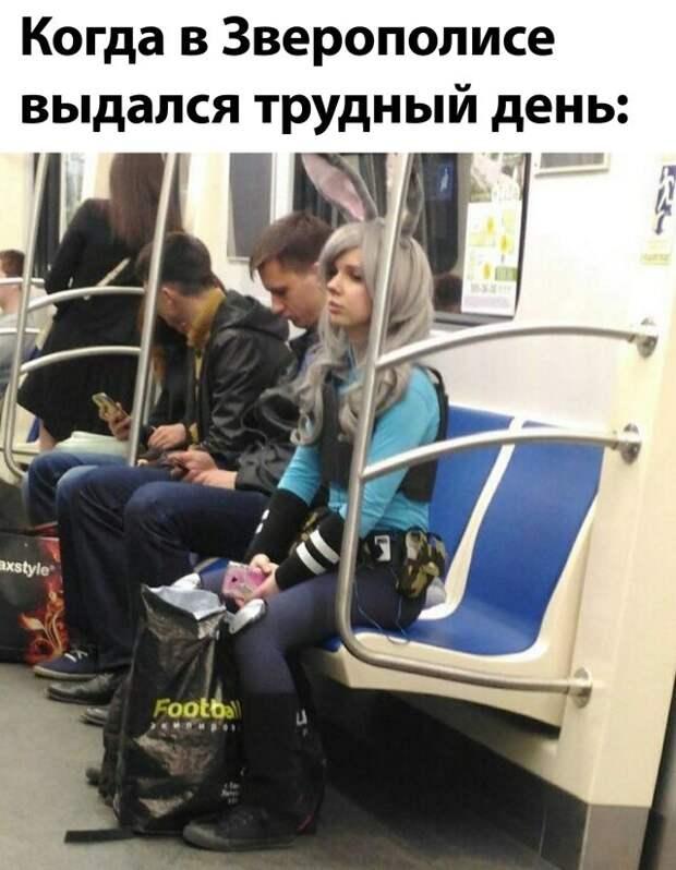 Подборка прикольных фото №2392 (64 фото)