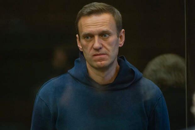 Суд по делу Навального о клевете на ветерана начался в Москве