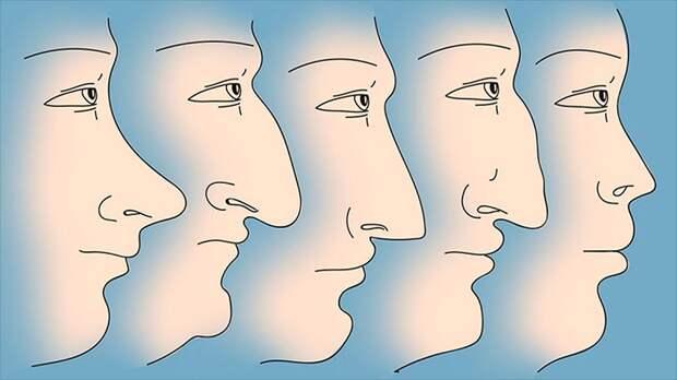 """""""Хочешь хорошего мужа - смотри на нос"""" (интересные приметы)"""
